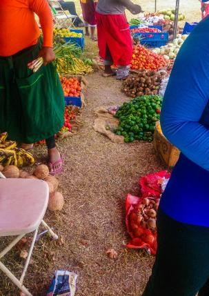 UWI Farmer's Market www.lifeofajamaican.com