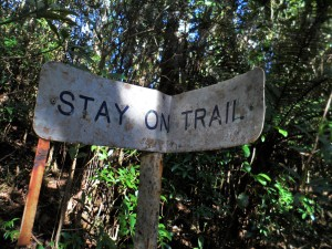 DON'T GET LOST: STAY ON TRACK: NO SHORTCUTS