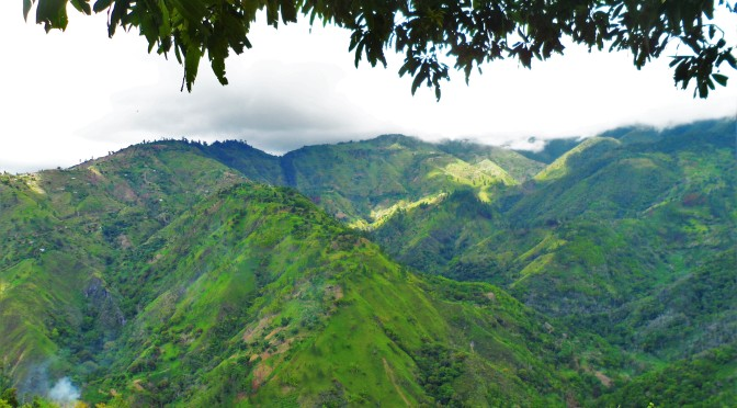 The Blue Mountains Jamaica: A Quick 'Peak'