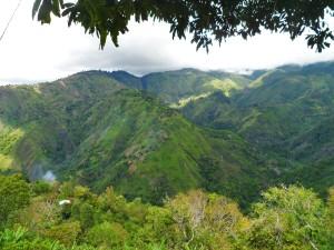 Blue Mountain (www.lifeofajamaican.wordpress.com)
