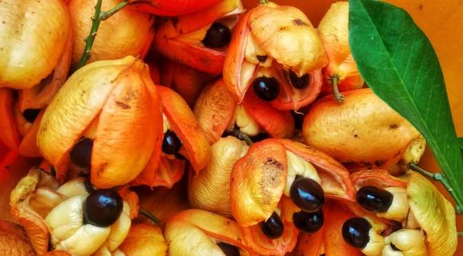 Ackee and Saltfish: Slave Food to National Dish